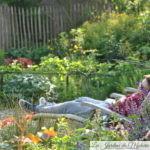 "Jardinier ""contemplatif"" : Réduire l'entretien de son jardin"
