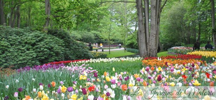  Visite de jardin : le parc floral du Keukenhof