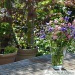 Chroniques de mon jardin: Joli mois de Mai (1)