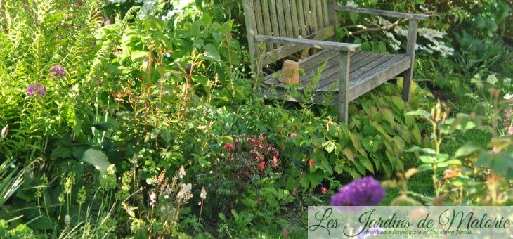 Chroniques de mon jardin: Joli mois de Mai (2)