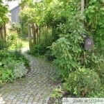 Chroniques de mon jardin: Park Allée...