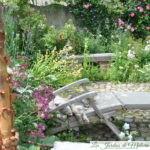 Chroniques de mon jardin: Une sieste au soleil?