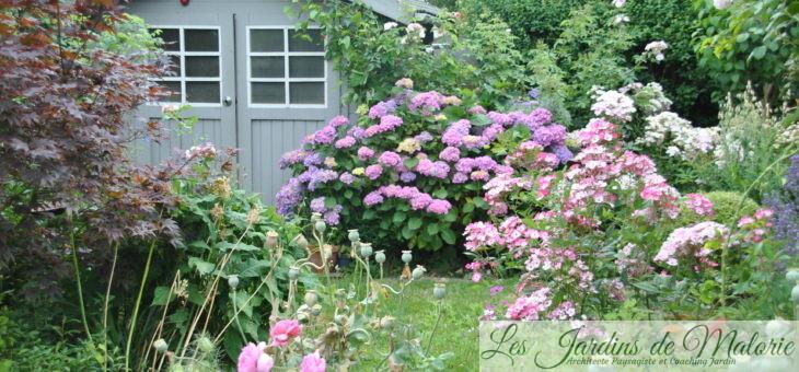Chroniques de mon jardin: Faites qu'il soit beau!