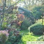 Chroniques de mon jardin: dans la grisaille humide d'octobre