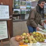 Entretien et restauration des jardins comestibles: Brackelaire Pascal
