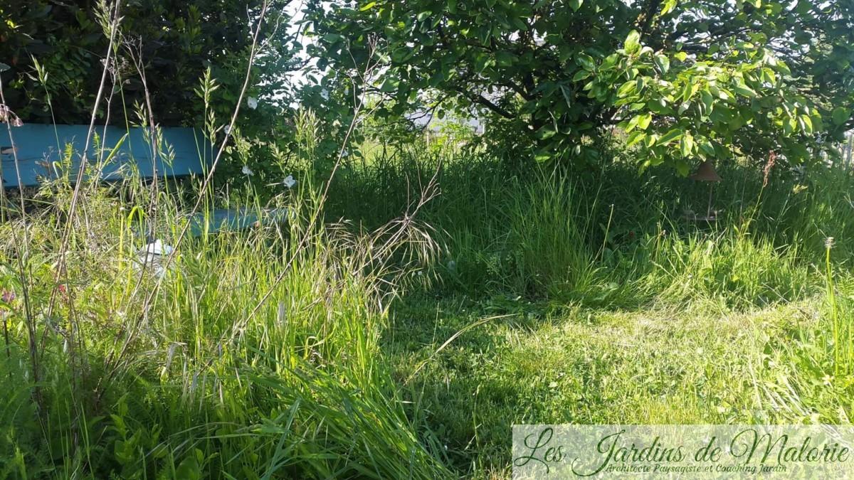 jardin naturel et tonte différenciée
