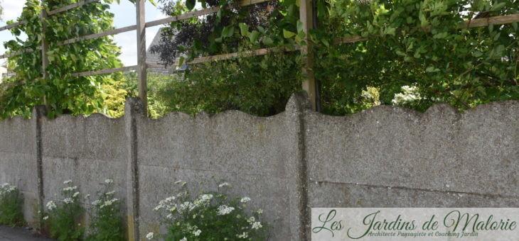 Brise-vue, comment protéger son jardin des regards indiscrets?