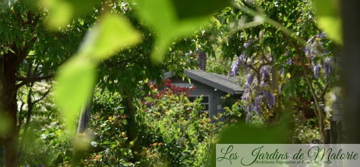 Chroniques de mon jardin : pour les passants…