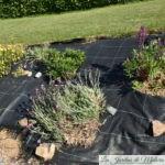 Garden faux pas : Pourquoi je n'aime pas les plantations sur toiles ?