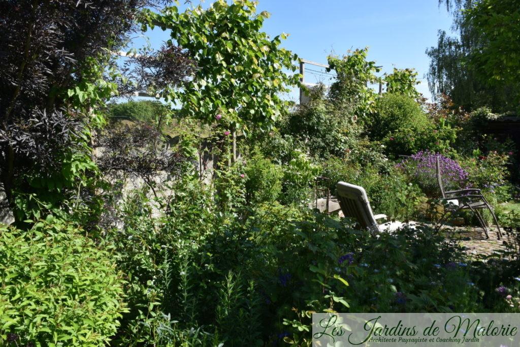 sambucus nigra 'Black Lace' au feuillage très sombre, tilleuls palissés, et la terrasse ronde