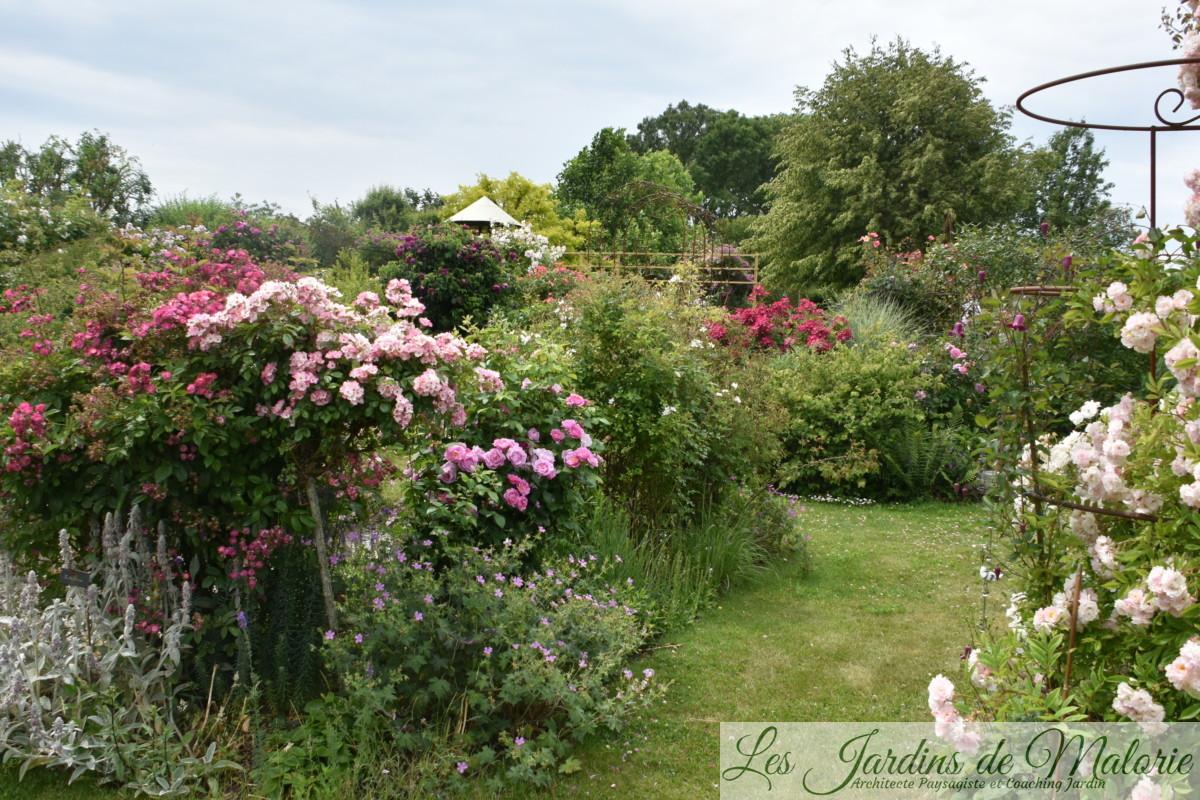 Mon jardin vu par Malo