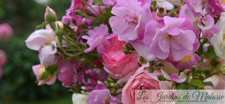 Un bouquet de roses du jardin…