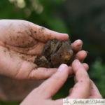 tester la texture du sol
