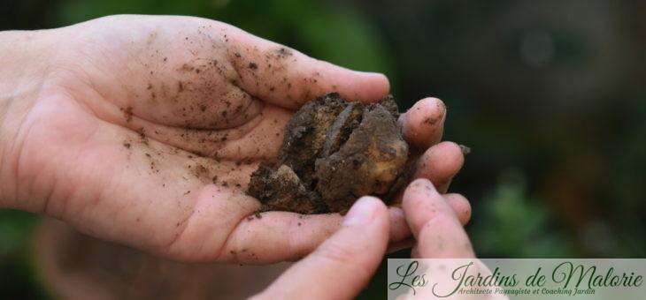 Conseils : Tester la terre de son jardin