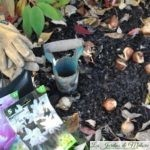 Travaux d'octobre au jardin : un nettoyage succinct