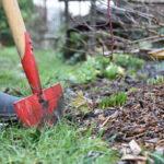Travaux du mois : février au jardin