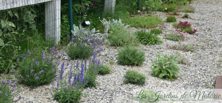 Coaching jardin : jardin sur graviers chez Cléo et John