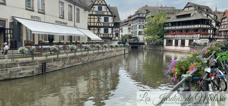 De retour de Strasbourg…